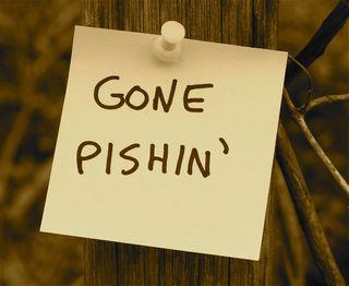 Gone pishin