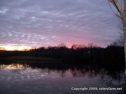 Dawn 3-24-07