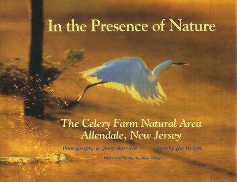 In Presence cover