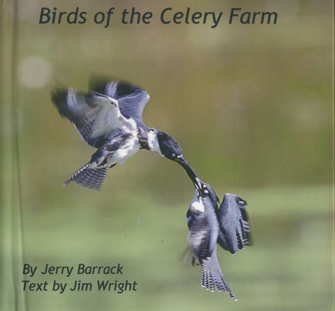 Birds of cf cover