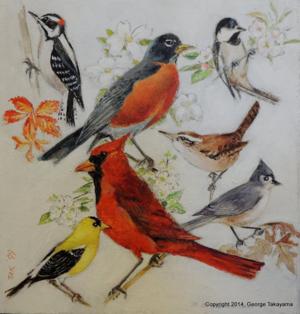 Takayama for birdwatcher(1)