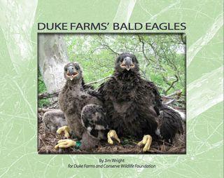 DF eagle e-book-001