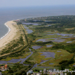 S. Cape May  Meadows LH JW_4566-001