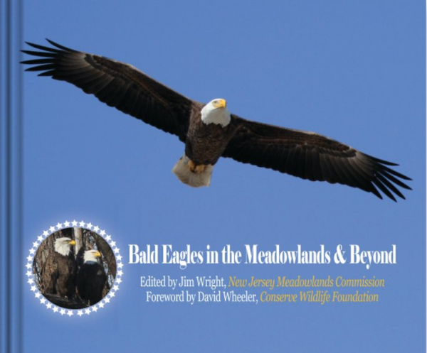Bald Eagles in the Meadowlands cover