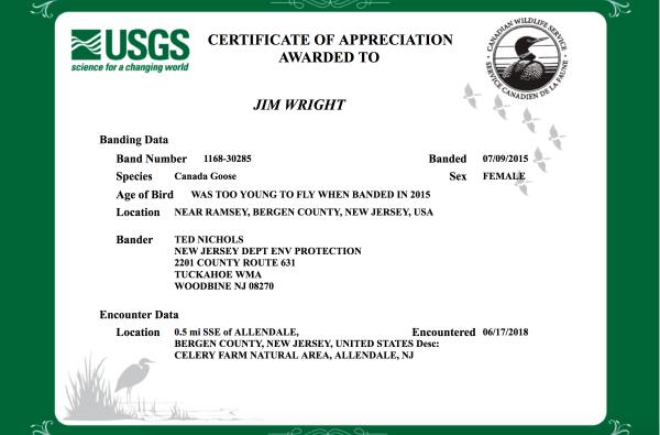 Certificate of Appreciation Goose