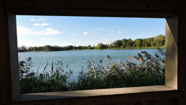 Mehrhof Blind view Jwright