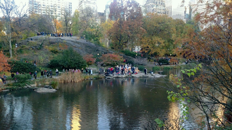 F Virrazzi onlookers at Central Park 1