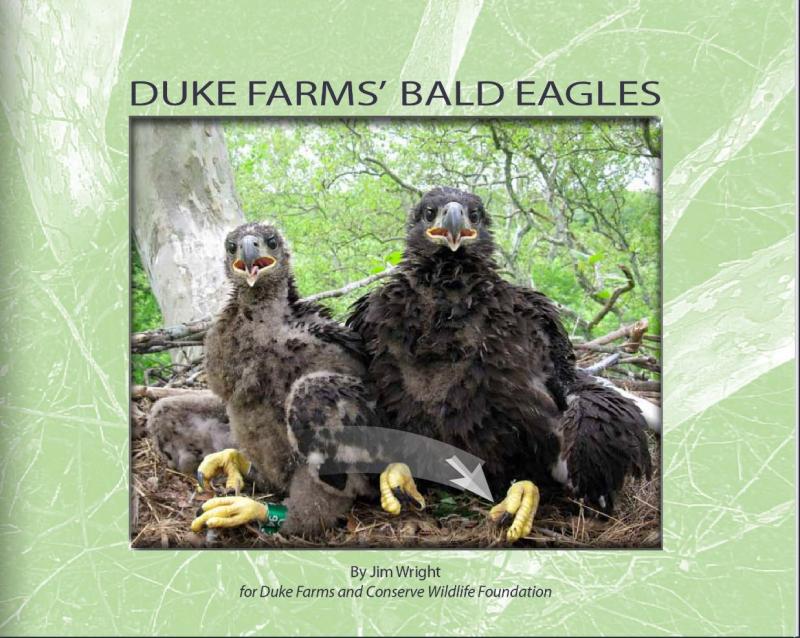 Duke Farms e-book cover
