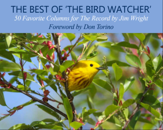Best of Bird Watcher cover