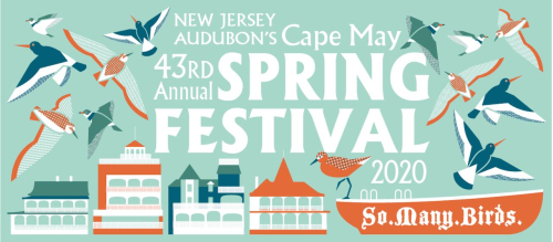1 Cape May Spring Festival logo.  PM