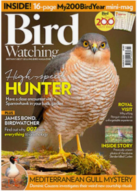 Bird Waching Magazine Cover