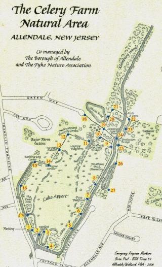 CF map big-page-001