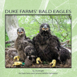 Duke Farms Cover
