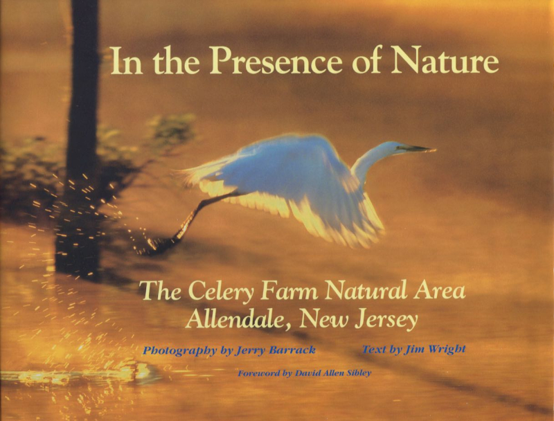 CELERY FARM COVER Presence Nature (1)